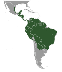 Distribución do ocelote nas Américas