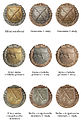 Odznaky vojakov vojnovej SR1 1939-45.jpg