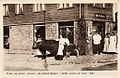 Oksen og kalven serveret ved kongemiddagen i Vardø. Leveret af Holm 1907..jpg