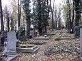 Olšanské hřbitovy (3).jpg