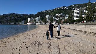 Oriental Bay By Br3nda (Flickr: Oriental Bay) [CC-BY-2.0 (https://creativecommons.org/licenses/by/2.0)], via Wikimedia Commons
