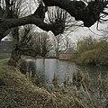 Overzicht met de borg en de gracht, geheel links de schuur - Middelstum - 20387412 - RCE.jpg
