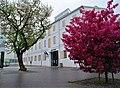 Pärnu Muuseum.jpg