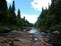 Pêche rivière Montmorency - 28684364371.jpg