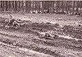 Panzergrenadiere 3 Bundeswehr 1968.jpg