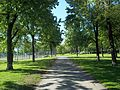 Parc Jeanne-Mance 09.JPG