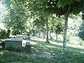 Parque de merendas em Foz de Arouce - panoramio.jpg