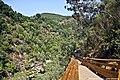 Passadiços do Rio Paiva - Portugal (26769567024).jpg