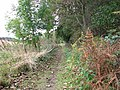 Path to Wood's End - geograph.org.uk - 1532714.jpg