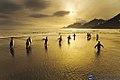 Penguins in St. Andrews Bay.jpg