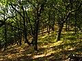 Perőcsény, Hungary - panoramio (4).jpg