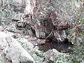 Petit coin d'eau à proximité de chutes de la Nawa.jpg