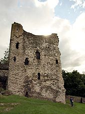 A stone tower on ground sloping downwards from left to right. There are openings in the tower marking where windows would have been.