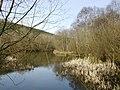 Pexton Pond - geograph.org.uk - 1208883.jpg