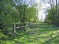 Picnic Area by Stretton Watermill - geograph.org.uk - 406404.jpg