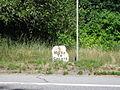 Pike's Mile Marker 9, Calais, Maine.jpg