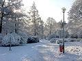 Planteringsförbundets park i Falköping vinter 5160.jpg