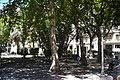 Plaza Cagancha foto 2 - panoramio.jpg