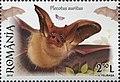 Plecotus auritus 2016 stamp of Romania.jpg