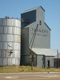 Grain Elevator in Plevna