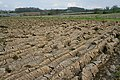 Ploughed field near Old Dalby - geograph.org.uk - 159808.jpg