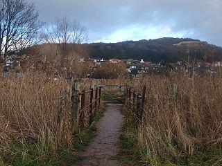 Bryn Euryn hillfort in Conwy