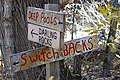 Pools, Rocks, or Switchbacks?.jpg