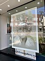 Portrait at the gallery window at Paddington, New South Wales.jpg