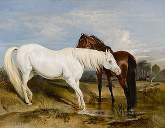 Edwin Landseer - Portrait of an Arab Mare with her Foal by Sir Edwin Henry Landseer. Circa 1825. Commissioned by Princess Charlotte for her lady-in-waiting, Lady Barbara Ponsonby