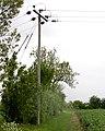 Powerpole beside bridleway, Broadwell - geograph.org.uk - 1307486.jpg