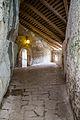 Predjama Castle (18013220948).jpg