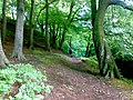 Prestwich Clough near M60.jpg