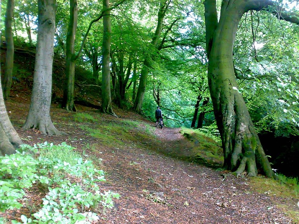 Prestwich Clough near M60