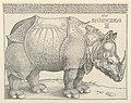 Print, The Rhinoceros, 1515 (CH 18384759-2).jpg