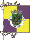 Flag of Vila Flor