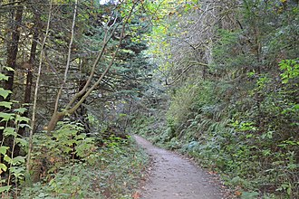 Purisima Creek Redwoods Open Space Preserve - Image: Purisima Creek Trail 4