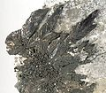 Pyrargyrite-276238.jpg