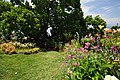 Quinta das Vinhas ^ Cottages, Estreito da Calheta, Madeira, Portugal, 27 June 2011 - Main house area - panoramio (12).jpg