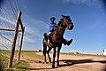Qunu, Eastern Cape, South Africa (19887971404).jpg