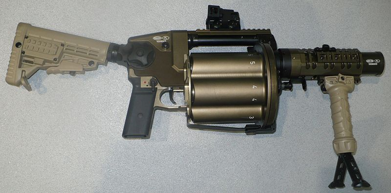 800px-RGP40_MSPO2010_P1010117.JPG