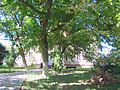 RO BH Conacul din Salard (3).jpg