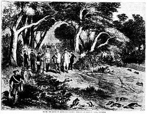 Rabbits in Australia - The Duke of Edinburgh rabbit shooting at Barwon Park, Victoria in the 1860s