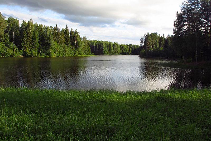 File:Rae järv.JPG
