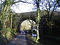 Railway bridge near Pont Alun - geograph.org.uk - 96939.jpg