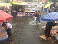 Rainfall at Copilco Station, Mexico City - 1.jpg