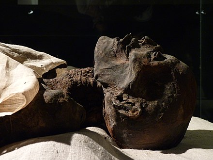 Mummy of Ramesses I Ramses I Mummy.jpg