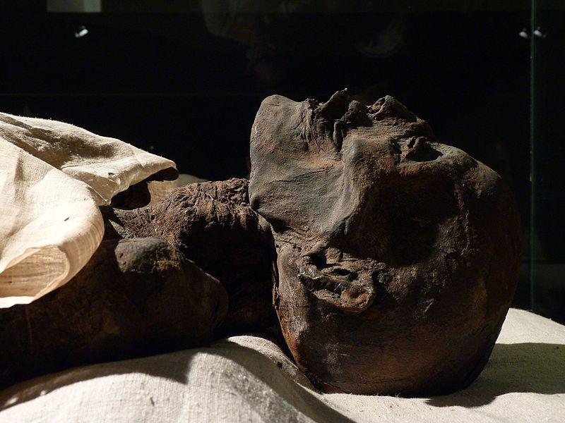 File:Ramses I Mummy.jpg