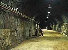 A photograph of a white horse approaching the viewer and drawing a carriage down a grey-brick-lined tunnel lit by circular ceiling lights