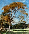 Ranken, William Bruce Ellis; The Yellow Tree.jpg