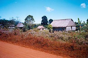 Ratanakiri Province - Ratanakiri countryside